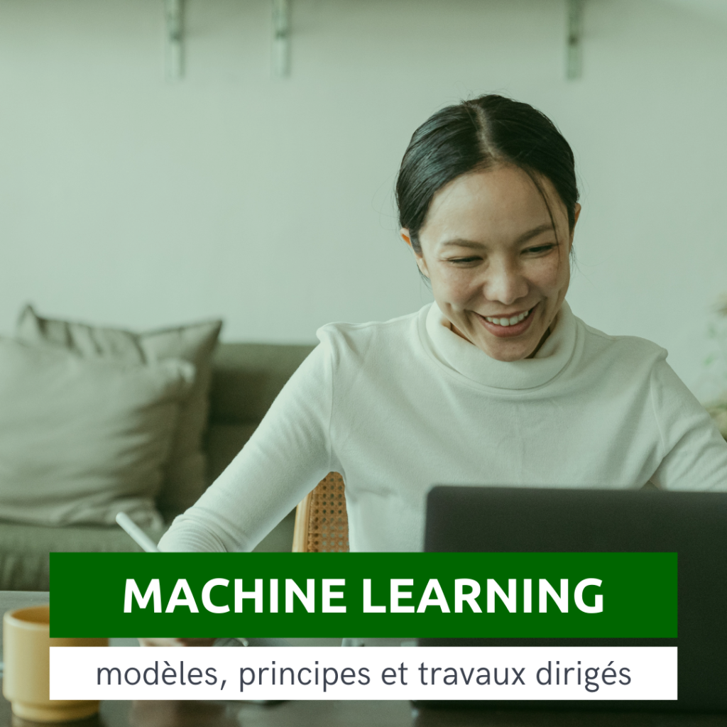 Formation-Doptim-Machine Learning